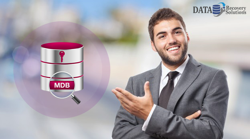 2 Best MDB Viewer tool to Open & Read Access Database Files